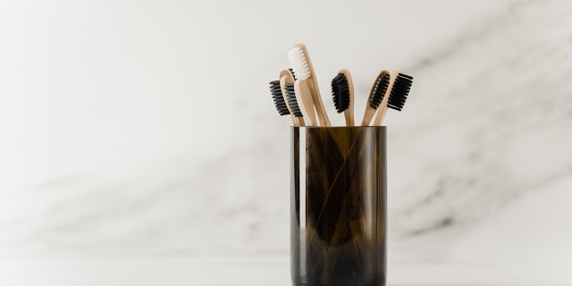 What is the history of the toothbrush so far?